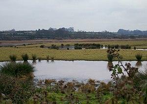 RSPB Bowling Green Marsh - Bowling Green Marsh Nature Reserve Topsham2.