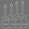 Breedlove Guitar Body Shapes.png
