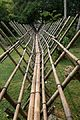 Bridge made of bamboo (29532760316).jpg