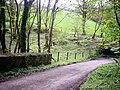 Bridge over stream, Cwmmiles, Login - geograph.org.uk - 1273219.jpg