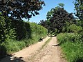 Bridleway to Claxton - geograph.org.uk - 1330055.jpg