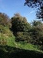 Bridleway to Kingston - geograph.org.uk - 1511861.jpg