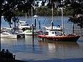 Brisbane River Scene - City Botanic Gardens - Brisbane - Australia (35752324205).jpg