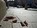 Broken glass, Omagh - geograph.org.uk - 789393.jpg