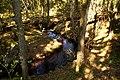 Brook - panoramio - Leszek Szleg.jpg