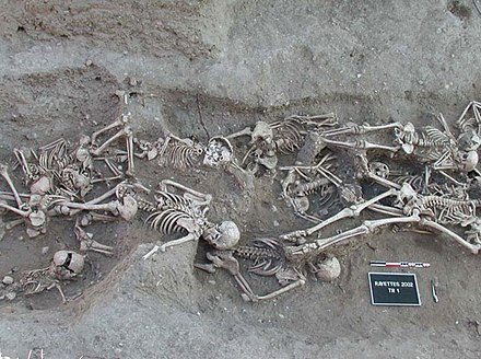 Skeletons in a mass grave from 1720-1721 in Martigues, France, yielded molecular evidence of the orientalis strain of Yersinia pestis, the organism responsible for bubonic plague. The second pandemic of bubonic plague was active in Europe from 1347, the beginning of the Black Death, until 1750. Bubonic plague victims-mass grave in Martigues, France 1720-1721.jpg