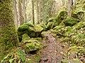Buchberger Leite - Wanderweg.jpg
