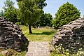 Burg-Hopfen-JR-E-5343-2021-06-28.jpg