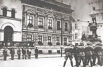 SEX AGENCY Bydgoszcz
