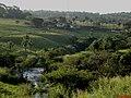 Córrego dos Bagres passando ao lado da Rodovia Cândido Portinari SP-334 - panoramio.jpg
