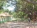 CASAS DEL MONUMENTO HISTORICO NACIONAL ( AMBALEMA) 13.JPG