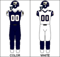 CFL Jersey WPG 1995.png