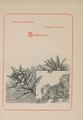 CH-NB-200 Schweizer Bilder-nbdig-18634-page071.tif