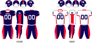 2012 Port Huron Patriots season