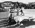COLLECTIE TROPENMUSEUM Brigadier Taunton bevelhebber van de Engelse bezettingstroepen in Borneo en omgeving reikt Japanse zwaarden uit aan Britse soldaten die zich verdienstelijk hebben gemaakt TMnr 10001586.jpg