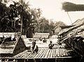 COLLECTIE TROPENMUSEUM Dajaks aan het werk op een aan een langhuis aangebouwd platform met links van hen opslagplaatsen voor het drogen van pas geoogste rijst TMnr 10020005.jpg