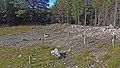 Canadian Dump (Mar Lodge Estate) (22SEP12) (04).jpg