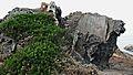 Cap de creus-cadaques-2009 (4).JPG