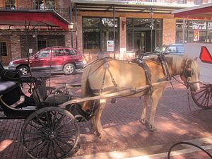 Carriage, Natchitoches, Louisiana