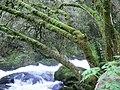 Cascadas no Toxa - panoramio.jpg