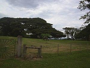 Pelotas - The countryside of Pelotas