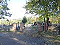 Cemetery in Puszcza Mariańaska - 01.jpg