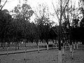 Centro, Tlaxcala de Xicohténcatl, Tlax., Mexico - panoramio (193).jpg