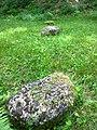 Cetatea de la Costesti - sanctuar pietre rotunde.jpg