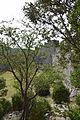 Château de Puilaurens043.JPG