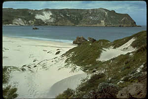 Channel Islands National Park CHIS8065.jpg