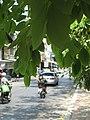 Chiang Mai (63) (28280999281).jpg