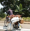 Chicken for sale Gashora,Rwanda.jpg