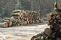 Chiltern timber stockpile - geograph.org.uk - 378067.jpg