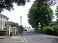Chine Avenue, Shanklin, Isle of Wight - geograph.org.uk - 1484226.jpg
