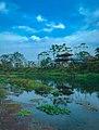 Chitwan national park area.jpg