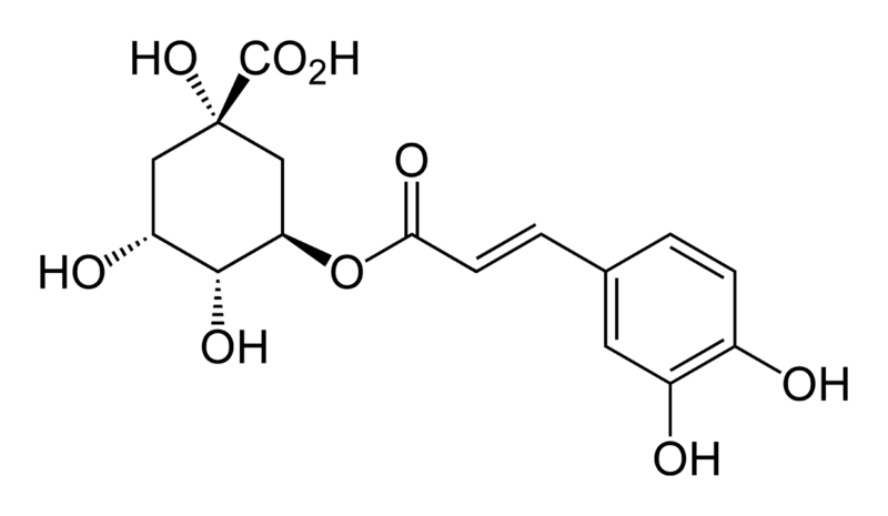 Chlorogenic-acid