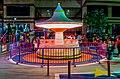 Circus Motion blur.jpg