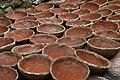 Clay Pots in Pots Village in Abeokuta, Ogun State-Nigeria.jpg
