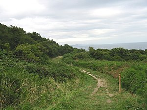 Ware Cliffs - Coast path from Ware Cliffs down to Lyme Regis