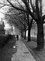Colbourne Street - 1908 (21465039282).jpg