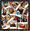 Collage - The Market (3800753320).jpg