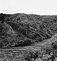 Collectie NMvWereldculturen, TM-20001616, Negatief- 'Berglandschap met rijstvelden', fotograaf Boy Lawson, 1971.jpg
