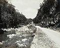 Collectie Nationaal Museum van Wereldculturen TM-60061956 Bog Walk, de weg langs de rivier Cobre Jamaica fotograaf niet bekend.jpg
