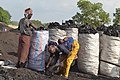 Commerce de charbon 12.jpg