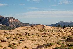 Coral pink sand dunes state park.jpg