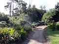 Cornwall Fae15.jpg