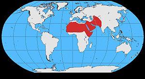 Brown-necked raven - Image: Corvus ruficollis map