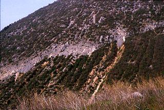Earthquake environmental effects