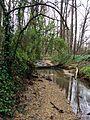 Creek bank at Fallon Park in Raleigh, North Carolina.jpg