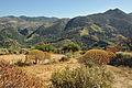 Crete Polyrrhenia R05.jpg